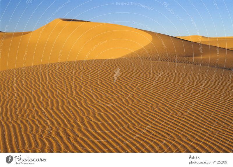 Sandwellen Sand Wellen Afrika Wüste Stranddüne Sahara Niger