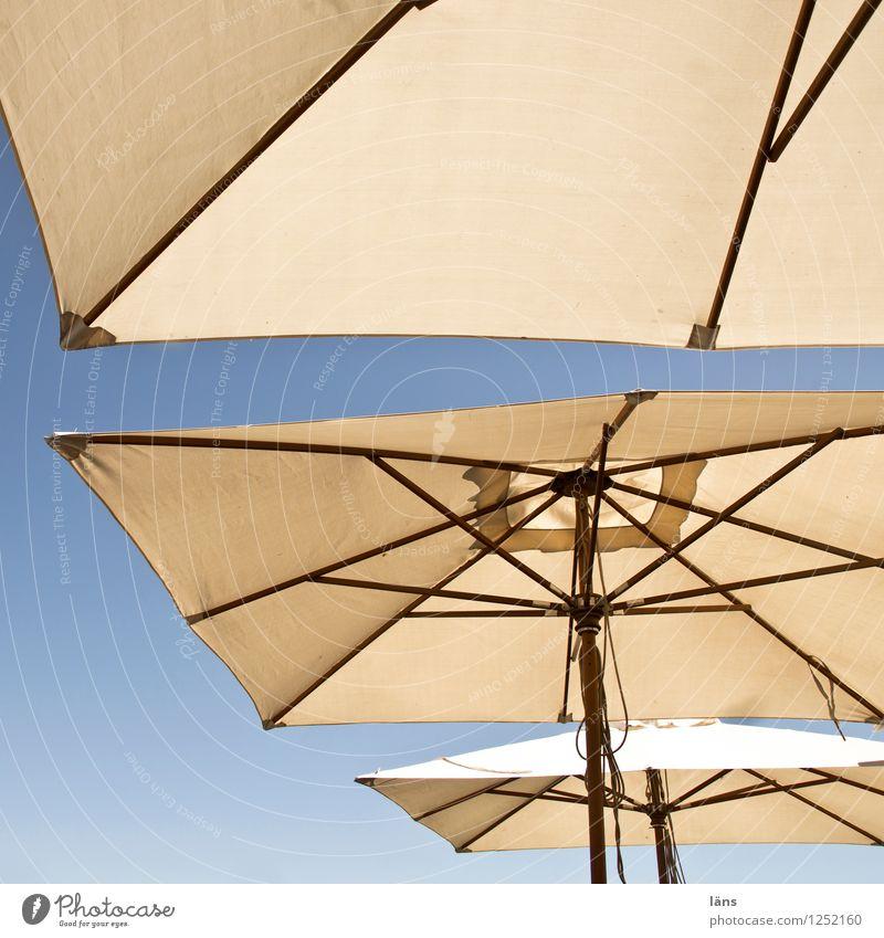 beschützt Gastronomie Schirm Sonnenschirm Wetterschutz Himmel Sommer Geborgenheit