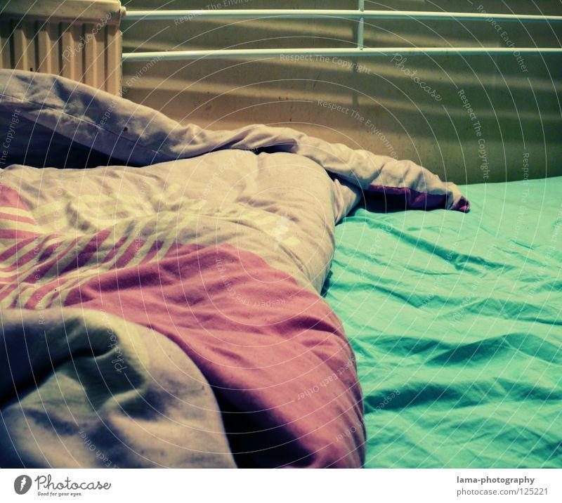 One Wild Night Bett Bettdecke Bettwäsche Falte unordentlich gebraucht schlafen unruhig träumen Alptraum Wohngemeinschaft Wohnung Schlafzimmer grün violett Möbel