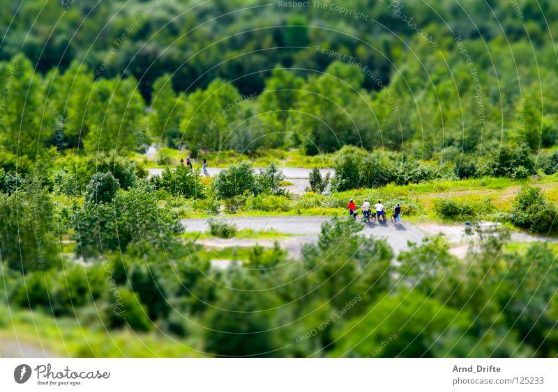 Mini-Landschaft Mensch Baum grün Sommer Wald Menschengruppe Wege & Pfade klein Spaziergang Freizeit & Hobby Bürgersteig Surrealismus Ruhrgebiet Miniatur