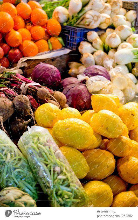 frisch! Lebensmittel Gemüse Frucht Orange Zwiebel Knoblauch Bohnen Zitrone Ernährung Vegetarische Ernährung kaufen Fes Marokko Gesundheit braun mehrfarbig gelb