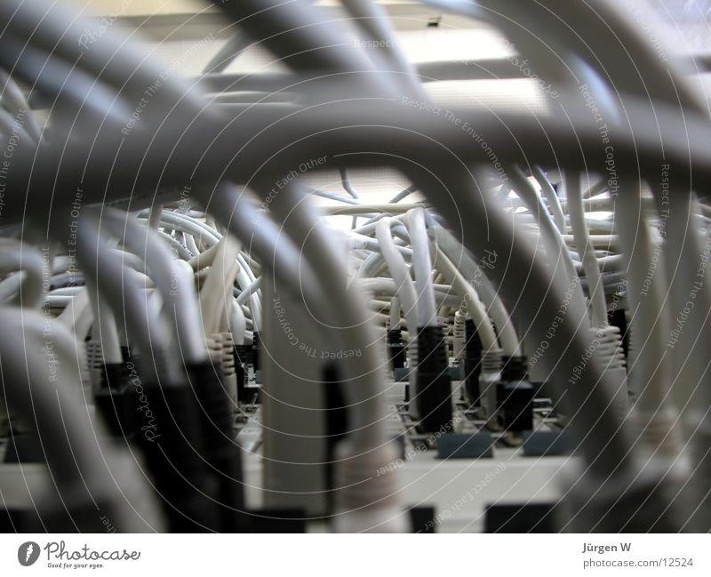 moderner Urwald Computer Kabel Netzwerk Technik & Technologie Dinge chaotisch Stecker Informationstechnologie