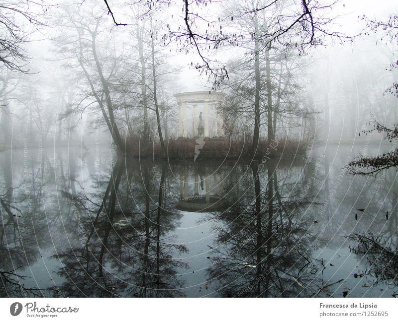 Insel im See Natur blau Wasser weiß Einsamkeit ruhig Winter kalt Stimmung Kunst Horizont Park träumen Zufriedenheit Nebel elegant
