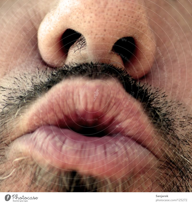 Bussi! Mann alt Gesicht sprechen Freundschaft Mund Nase süß Lippen nah Küssen Bart Wange schwarzhaarig singen Vollbart