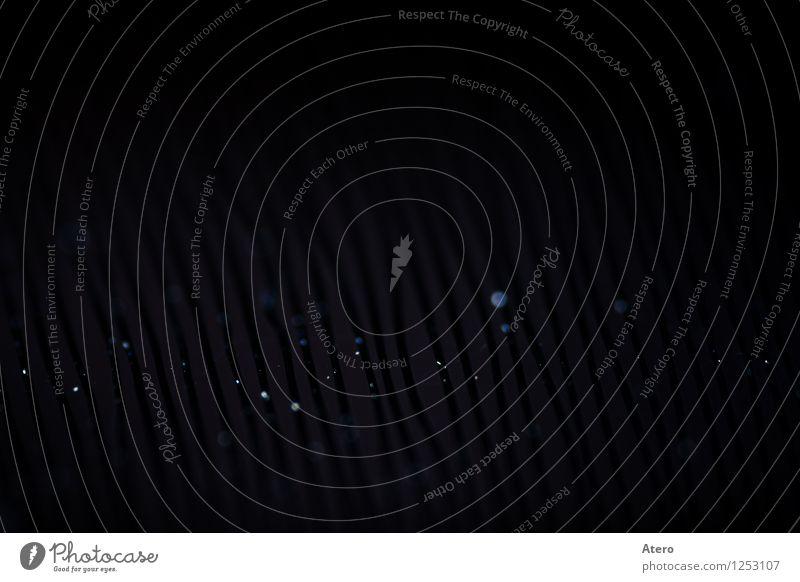 Curved lines Schallplatte Kunststoff beweglich Spielen Musik hören Plattenspieler mehrfarbig Makroaufnahme Menschenleer Textfreiraum oben Kontrast