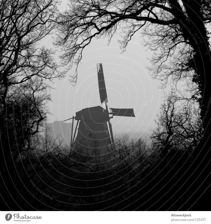 ein mühllein steht im walde... Natur alt weiß Baum schwarz Deutschland Perspektive Flügel Sträucher Ast Aussicht historisch Rahmen antik trüb Geäst