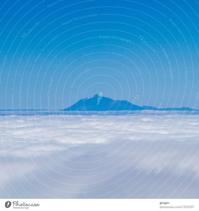 Meer aus Wolken Umwelt Natur Landschaft Himmel Frühling Schönes Wetter Felsen Berge u. Gebirge Teide Gipfel Schneebedeckte Gipfel blau weiß entgegengesetzt