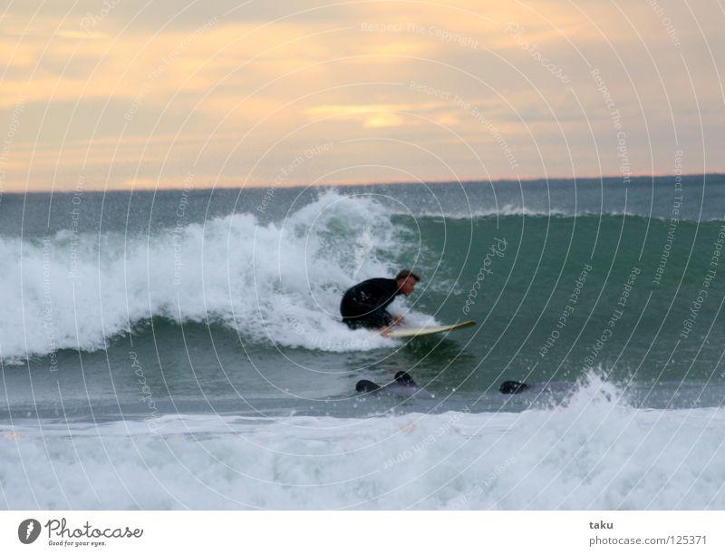 SURFING WITH THE DOLPHINS Wasser weiß Sonne Meer grün blau Tier springen Spielen Tanzen orange Wellen Wal Coolness beobachten Theaterschauspiel