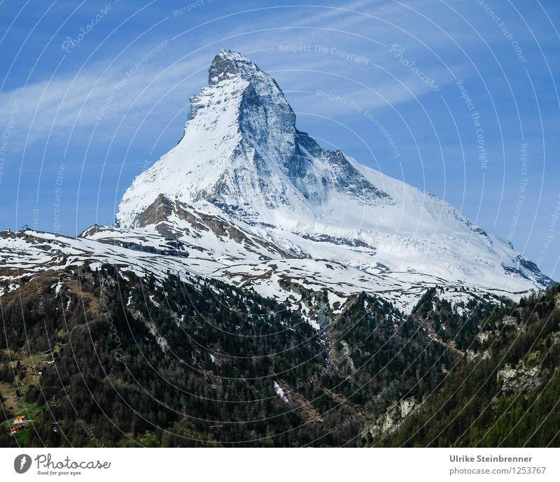 No matter how 2 Natur Ferien & Urlaub & Reisen Pflanze Baum Landschaft Berge u. Gebirge Umwelt Frühling Schnee Freiheit Tourismus Kraft hoch Ausflug bedrohlich