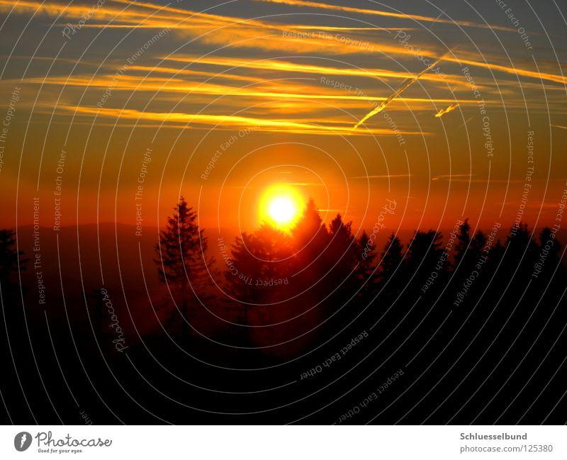 Abendsonne Himmel Natur blau Baum Sonne Wolken schwarz Wald gelb Farbe orange Horizont Nebel Romantik Warmherzigkeit Tanne
