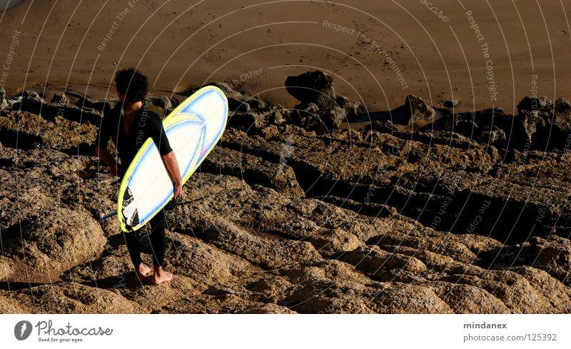 Ebbe? Meer Sand braun Küste Felsen Surfen Surfer Wassersport Surfbrett