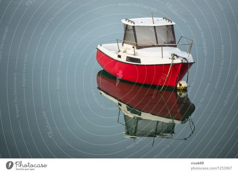 Boot in der Bretagne Erholung Ferien & Urlaub & Reisen Natur Landschaft Küste Motorboot Wasserfahrzeug rot Atlantik Ploumanac'h Frankreich Perros-Guirec
