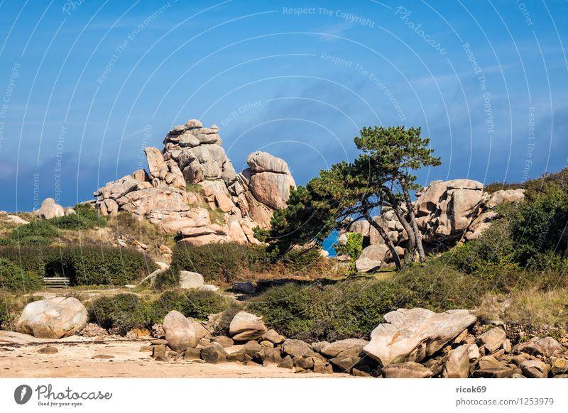Atlantikküste in der Bretagne Erholung Ferien & Urlaub & Reisen Natur Landschaft Wolken Baum Felsen Küste Sehenswürdigkeit Stein Tourismus Ploumanac'h