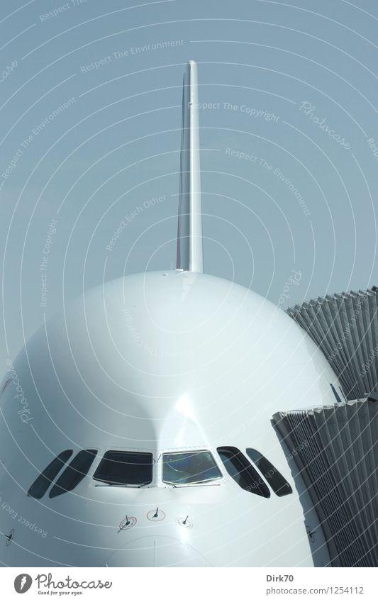 Big White Whale Ferien & Urlaub & Reisen Technik & Technologie Fortschritt Zukunft High-Tech Luftverkehr Wolkenloser Himmel Sommer Schönes Wetter Flughafen