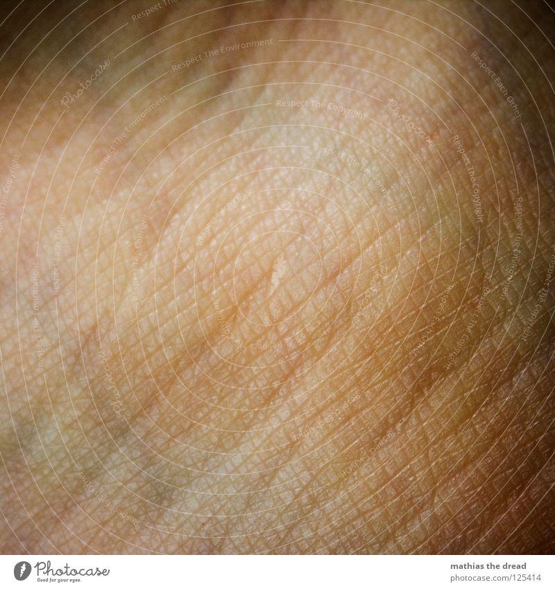 _EIN_STÜCK_MENSCH_ Silhouette Muster Pore klein Hautfarbe gezeichnet durcheinander Beleuchtung Gefäße Organ organisch rot Leben verzweigt Makroaufnahme