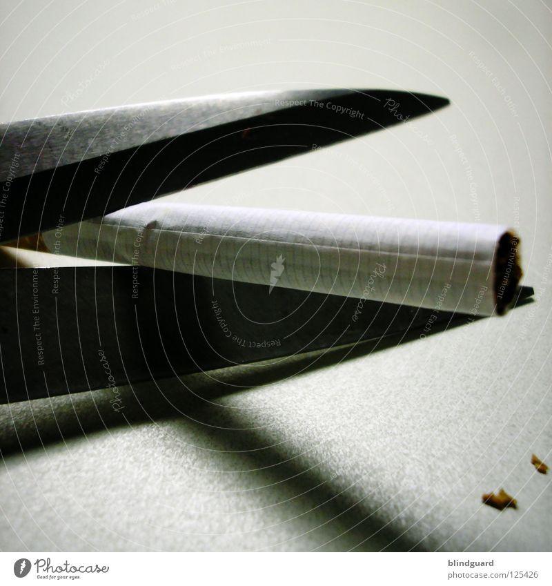 Die Letzte Zigarette Stress Rauschmittel Nikotin Teer Kondenswasser Verbote Regierung Subvention Tabak Packung Rauchen teuer beenden Glut brennen genießen Foyer
