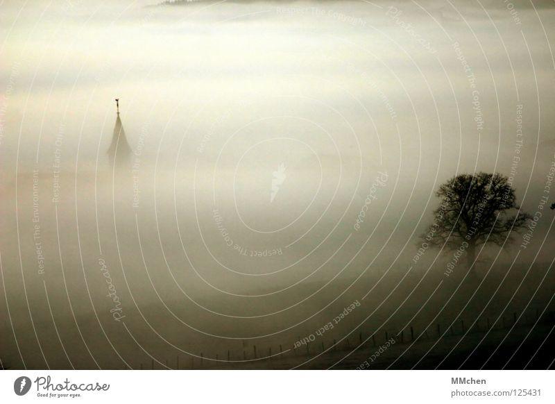 WanderTag untergehen Kirchturm Kirchturmspitze Turmspitze Schall Kirchenglocke Glocke Nebel Dorf Baum Sträucher Nebelbank dunkel weiß Morgennebel Durchblick Tau