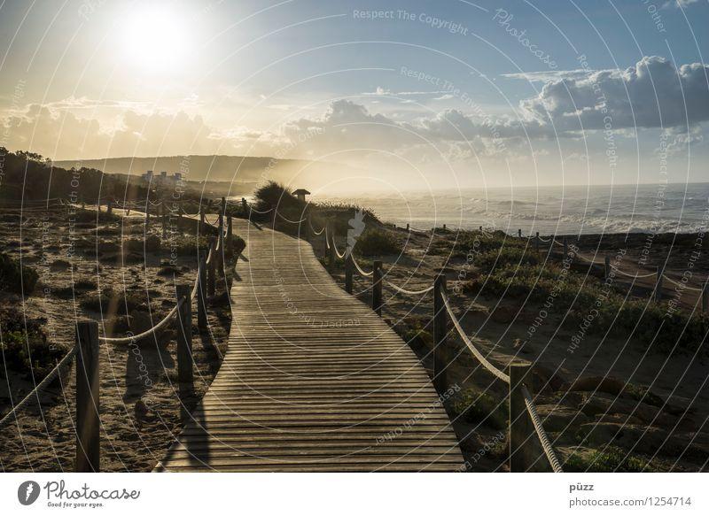 Zur Sonne Himmel Natur Ferien & Urlaub & Reisen Sommer Erholung Meer Landschaft ruhig Wolken Ferne Strand Umwelt Küste Freiheit Zufriedenheit