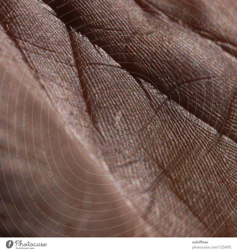 Lebensspuren II Hand Hintergrundbild Haut glänzend Spuren Gemälde Falte Riss Furche Hände schütteln Blattadern transpirieren schimmern gestikulieren Handfläche