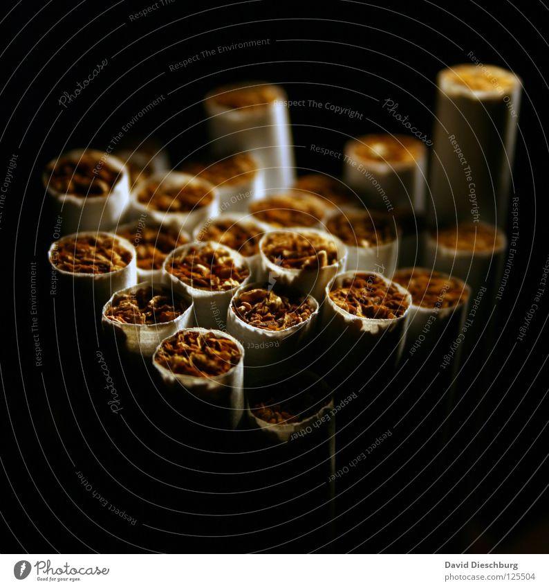 Im Schatten der Sucht schwarz gelb dunkel Brand Papier Suche rund Rauchen drehen Rauschmittel Zigarette gegen Streichholz Teer Schwäche