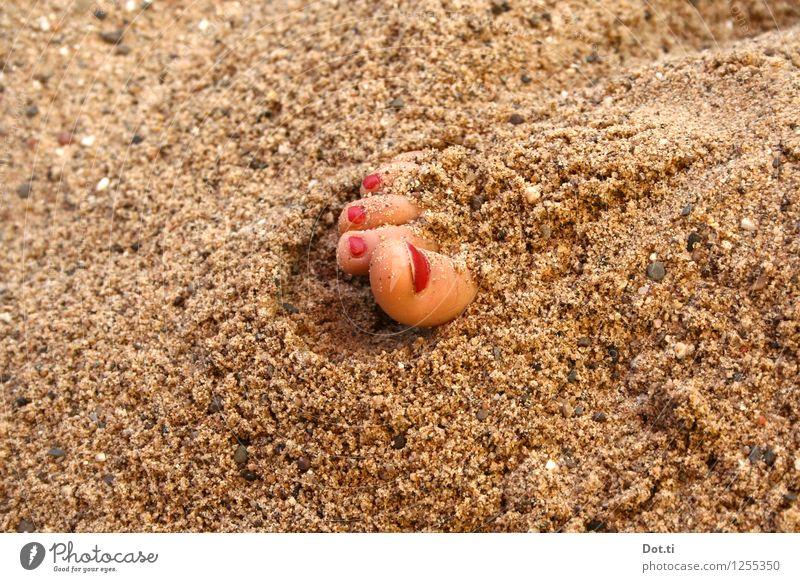 verschütt jejange Fuß Sand Sommer Strand Erholung rot Freude Neugier Überraschung Ferien & Urlaub & Reisen Zehen Zehennagel lackiert eingegraben eingraben