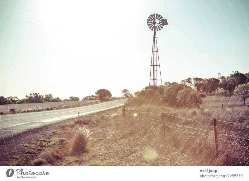 Australien wie im Katalog Natur Ferien & Urlaub & Reisen Sommer Einsamkeit Landschaft Ferne Umwelt Wärme Straße Freiheit Horizont Feld Klima Unendlichkeit