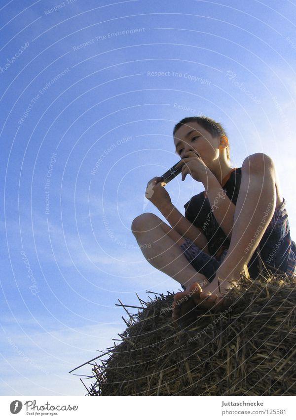 Der Junge mit der Mundharmonika Mensch Kind Natur Himmel Freiheit Glück Zufriedenheit Feld Konzert harmonisch untergehen Musikinstrument Musiker Stroh