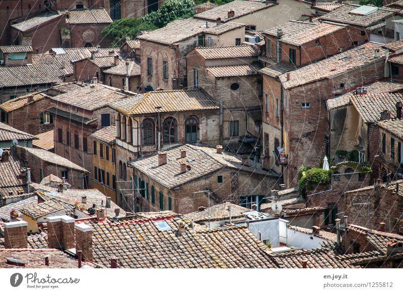 unübersichtlich Ferien & Urlaub & Reisen Abenteuer Sightseeing Städtereise Sommerurlaub Häusliches Leben Siena Toskana Italien Stadt Stadtzentrum Altstadt Haus