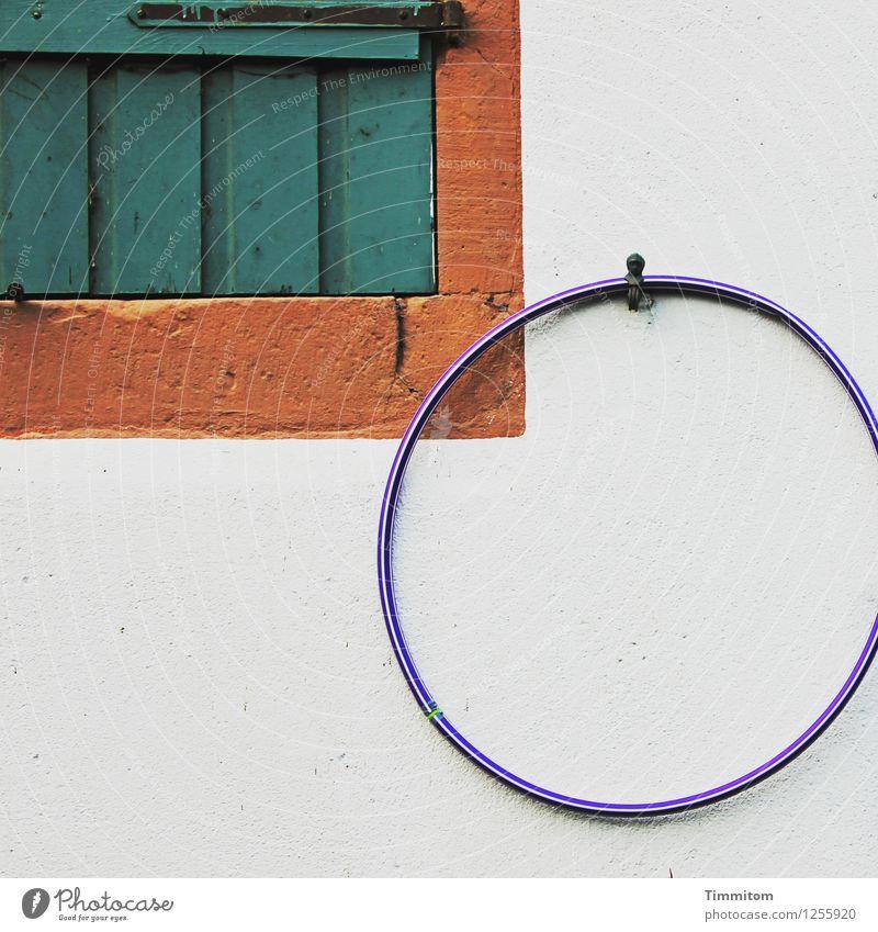 Spielen? Häusliches Leben Mauer Wand Fenster Hula Hoop Reifen Holz Kunststoff hängen ästhetisch einfach blau braun grün weiß Gefühle Fensterladen geschlossen