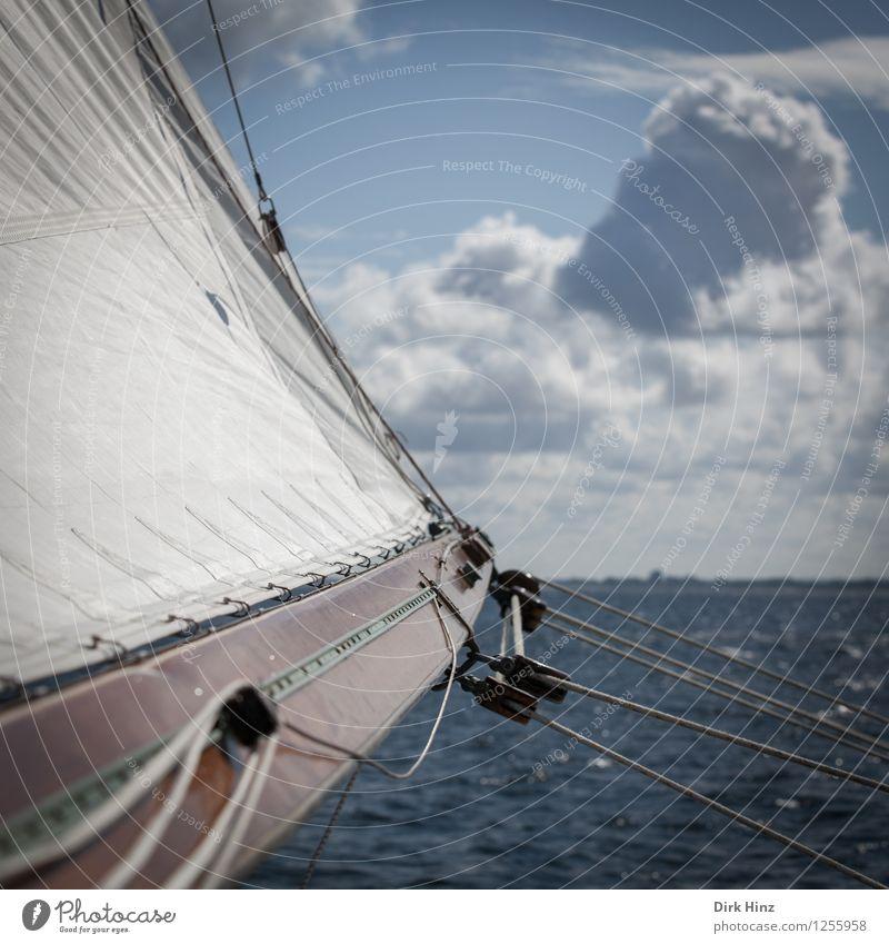 Raumschots Himmel Natur Ferien & Urlaub & Reisen blau Wasser weiß Meer Wolken Ferne Umwelt Bewegung Küste Sport Freiheit Horizont Tourismus