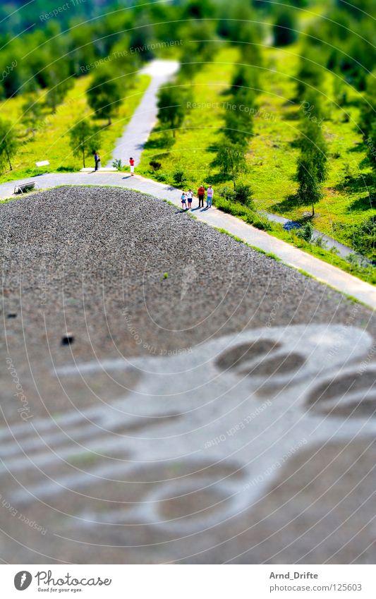 Mini-Landschaft II Mensch Baum grün Wald Garten Stein Wege & Pfade Park Graffiti Kunst klein mehrere Spaziergang Freizeit & Hobby Kultur Bürgersteig