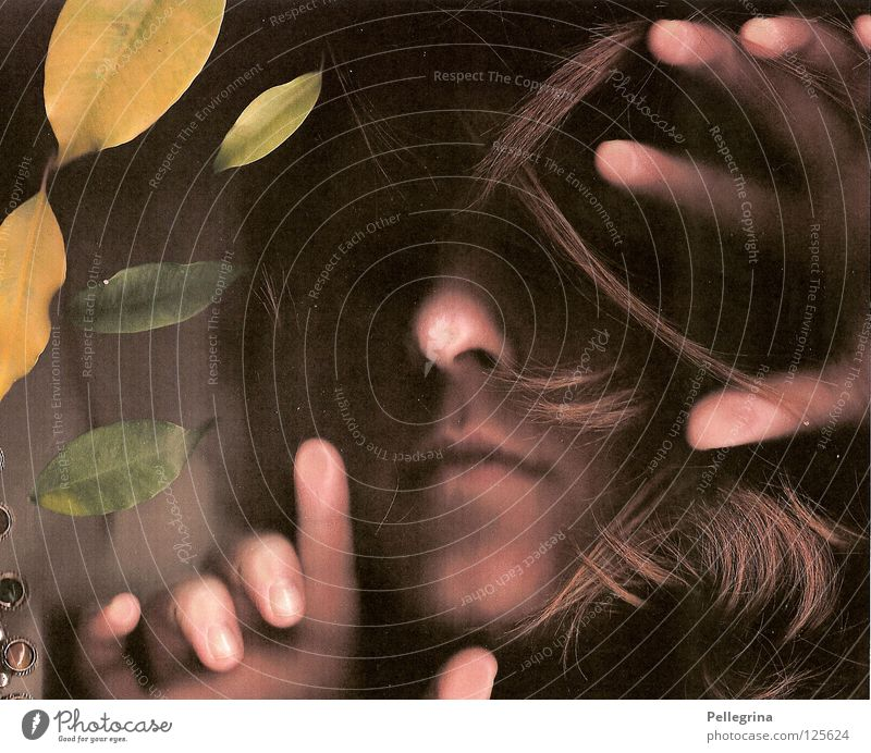 sturm Frau Hand Gesicht Blatt dunkel Haare & Frisuren Mund Glas Nase geheimnisvoll Sturm verstecken gefangen Fensterscheibe rückwärts Orkan