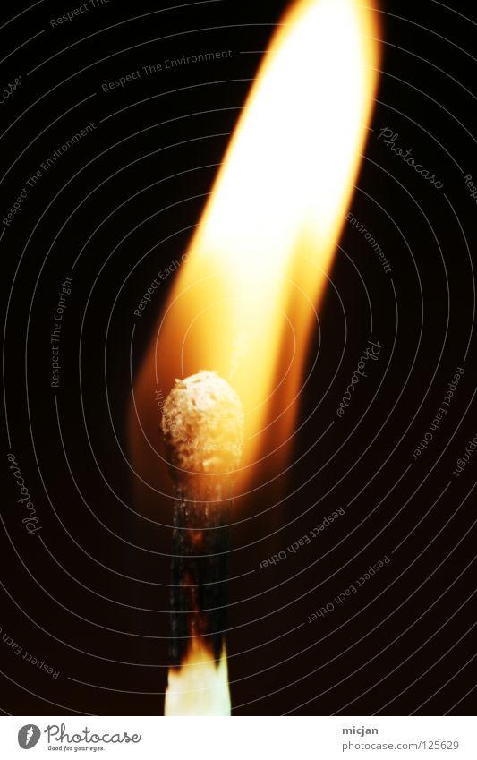 Antiwasser Streichholz Holz brennen heiß gefährlich Brennstoff anzünden Kerze Wunder Zigarre Licht Stock Brand Zauberei u. Magie Brandstiftung Waldbrand schwarz