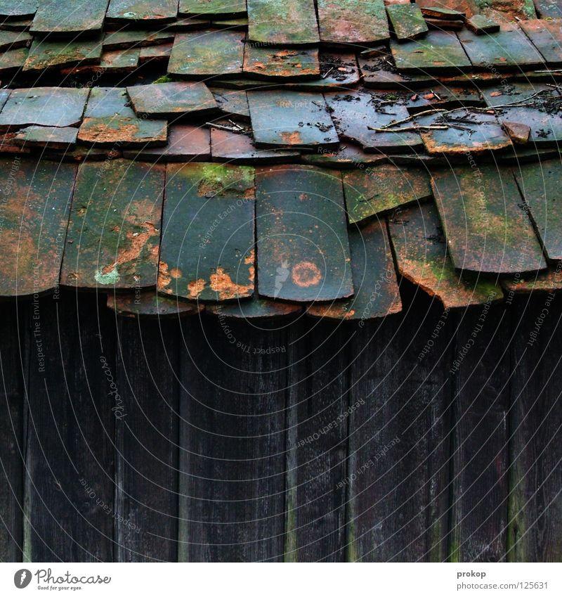 Überbiß mit Karies Backstein Dach Haus Holz Verfall chaotisch kaputt verfallen Ruine Zusammenbruch gefährlich gebrochen Dachziegel Loch durchlöchert feucht kalt