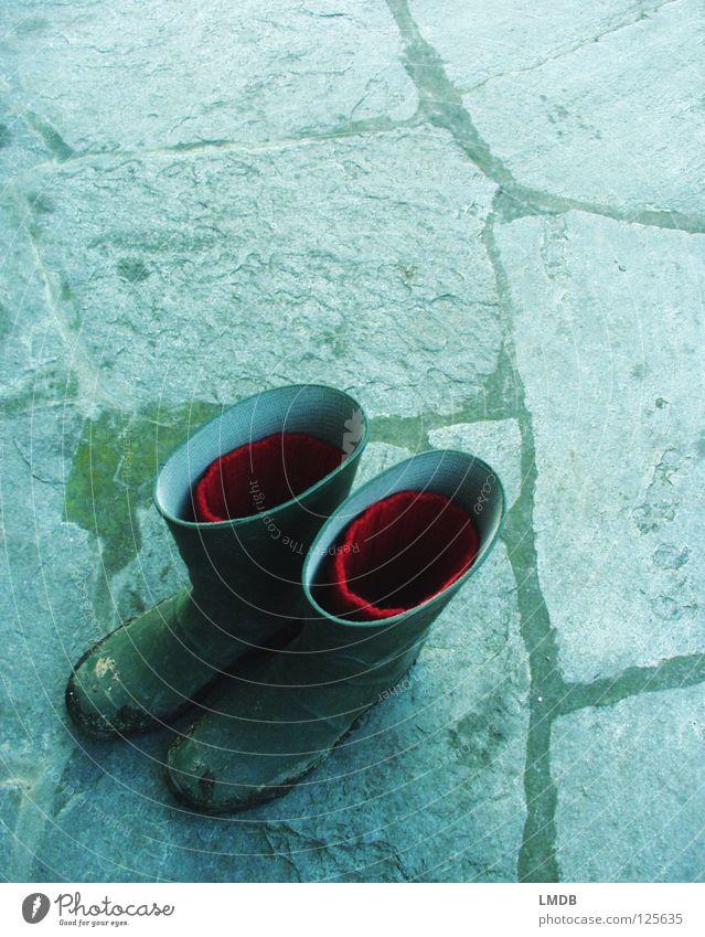 Cindarella am Tage Wasser grün blau rot Arbeit & Erwerbstätigkeit Garten Schuhe dreckig geschlossen Landwirt Bauernhof Stiefel Strümpfe Pflastersteine Märchen Schlamm