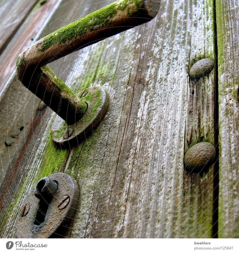 geheimnisvoll alt Garten Holz grau Park Tür Burg oder Schloss Tor verfallen Rost Griff Nagel aufschließen