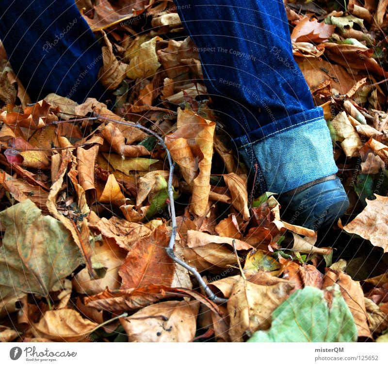 discovery. Herbst Blatt Schuhe entdecken Hose Rascheln Spaziergang gehen Stoff Stimmung Wege & Pfade wandern tief unten flach Waldboden forschen untergehen