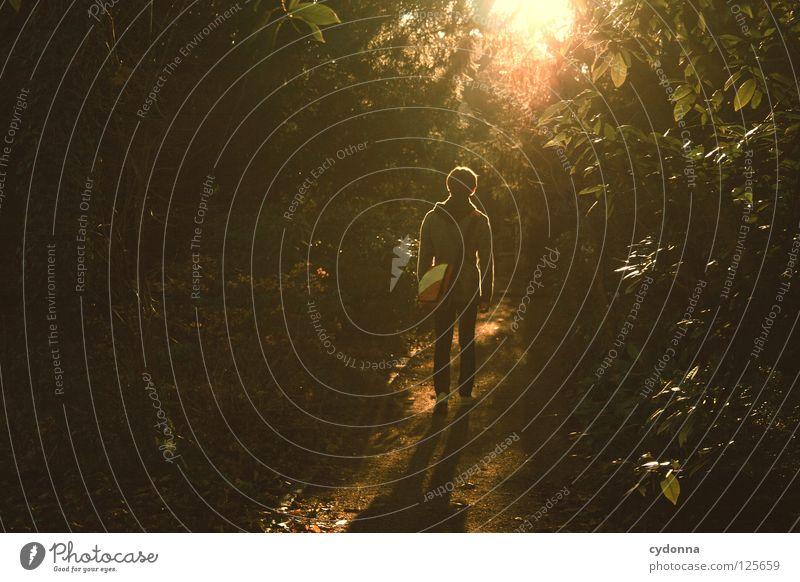 Little Light Mensch Mann Natur grün schön Baum Pflanze Sonne Ferien & Urlaub & Reisen ruhig Ferne Erholung Leben Landschaft Garten Bewegung