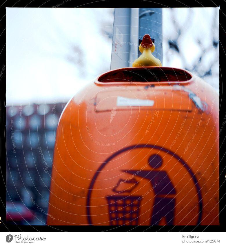 Müll-Ente Freude orange Kindheit dreckig Wachstum Coolness Spielzeug Stadtleben Statue Verzweiflung Sonnenbrille Umweltschutz Recycling Müllbehälter