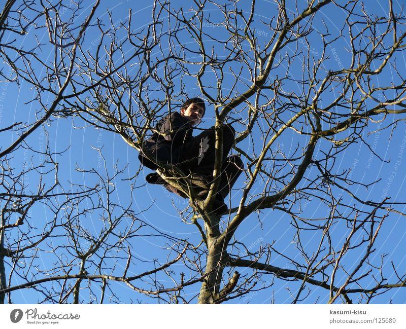 chillen Mann Himmel Baum Freude Winter verrückt gefährlich Freizeit & Hobby Ast