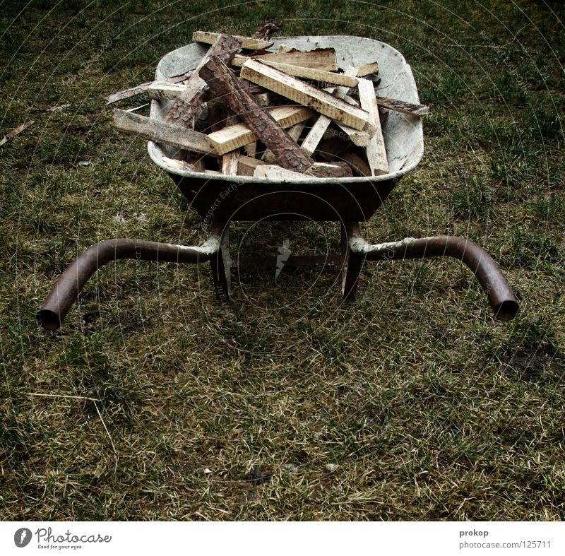 Ent-Spurt Schubkarre Holz Arbeit & Erwerbstätigkeit ländlich Handwerk Brennholz Rost schwer anstrengen Säge Holzstapel Wiese Gras schieben Sportveranstaltung