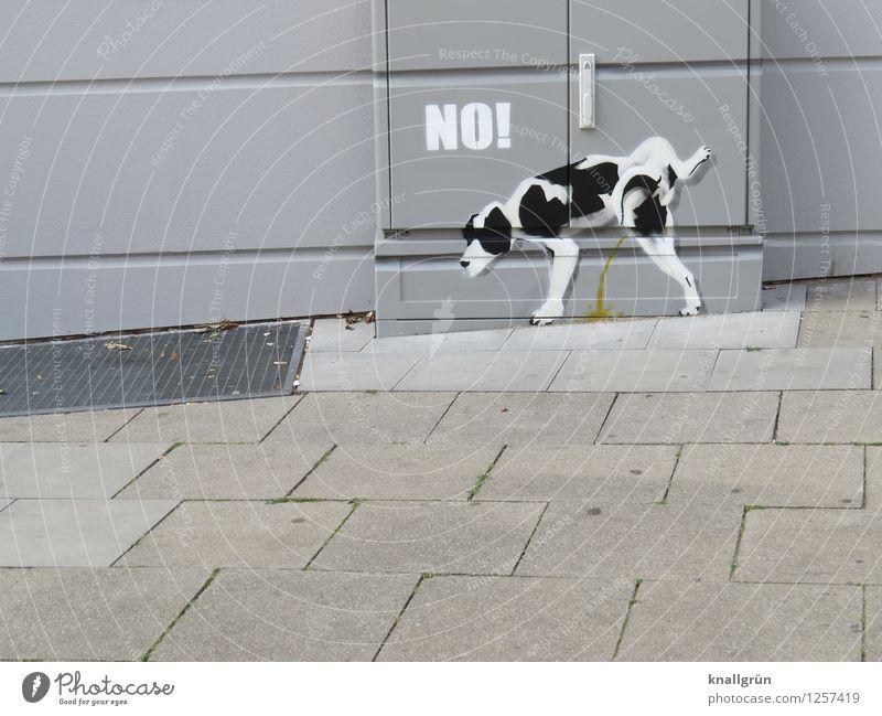 Reviermarkierung Hund Stadt weiß Freude Tier Haus schwarz Umwelt Wand Graffiti Gefühle natürlich lustig Mauer grau stehen