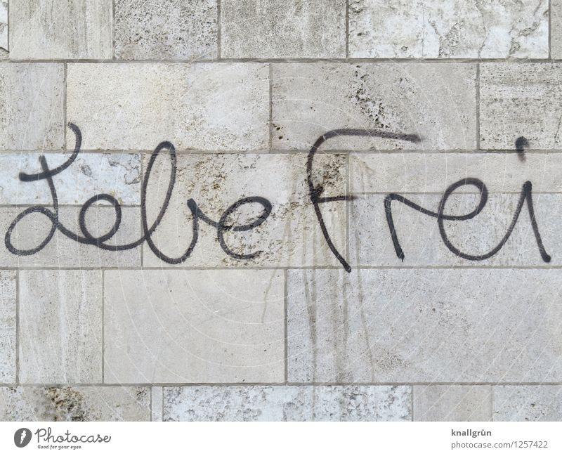 Lebe Frei Stadt Haus schwarz Wand Leben Graffiti Gefühle Mauer grau Freiheit träumen Kommunizieren Mut eckig