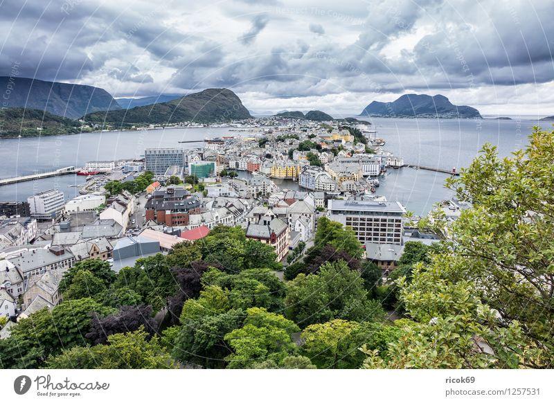 Blick auf Ålesund Ferien & Urlaub & Reisen Berge u. Gebirge Haus Natur Landschaft Baum Park Fjord Stadt Gebäude Architektur Tourismus Norwegen Møre og Romsdal