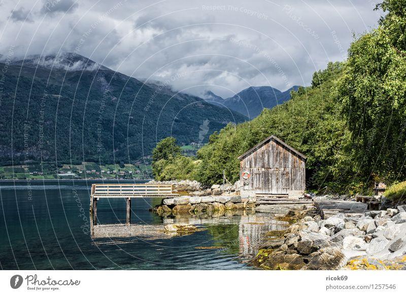 Bootshaus am Storfjord Erholung Ferien & Urlaub & Reisen Berge u. Gebirge Wasser Wolken Gras Fjord alt Idylle Natur Tourismus Norwegen Norddal Møre og Romsdal