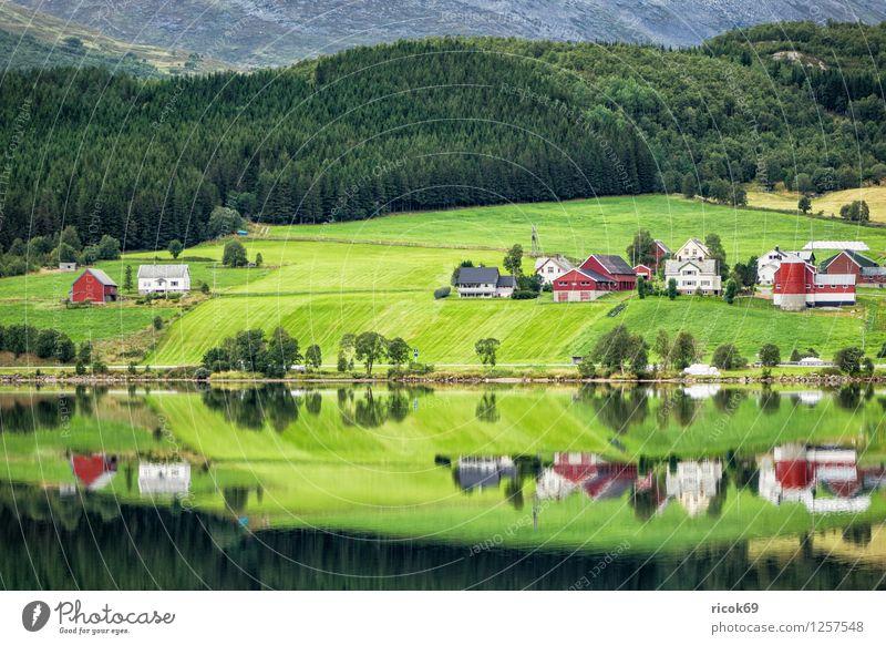 Bergsee in Norwegen Erholung Ferien & Urlaub & Reisen Berge u. Gebirge Haus Natur Landschaft Wasser See Hütte Gebäude Idylle Gebirgssee Møre og Romsdal