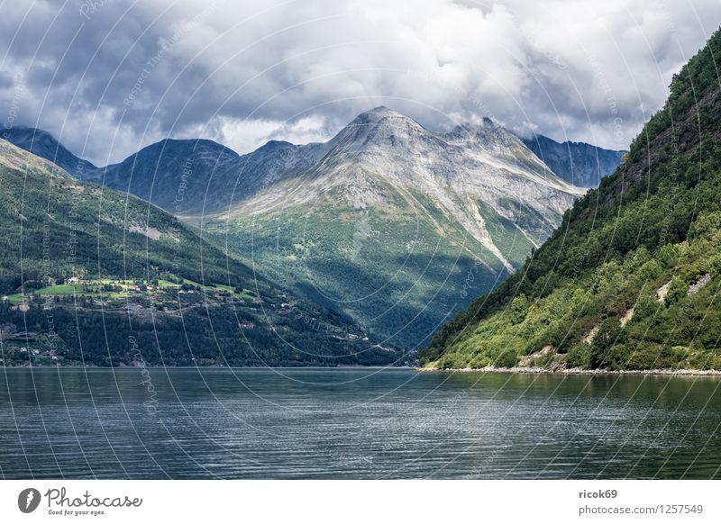 Storfjord in Norwegen Erholung Ferien & Urlaub & Reisen Berge u. Gebirge Natur Landschaft Wasser Wolken Fjord Meer Idylle Tourismus Norddal Møre og Romsdal