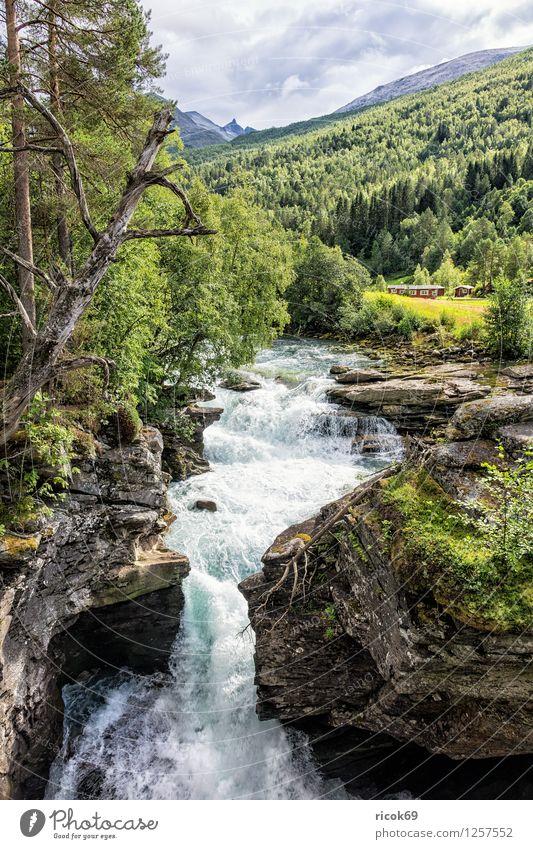 Wasserfall Natur Ferien & Urlaub & Reisen Baum Erholung Landschaft Wolken Berge u. Gebirge Felsen Tourismus Idylle Fluss Bach Skandinavien Norwegen
