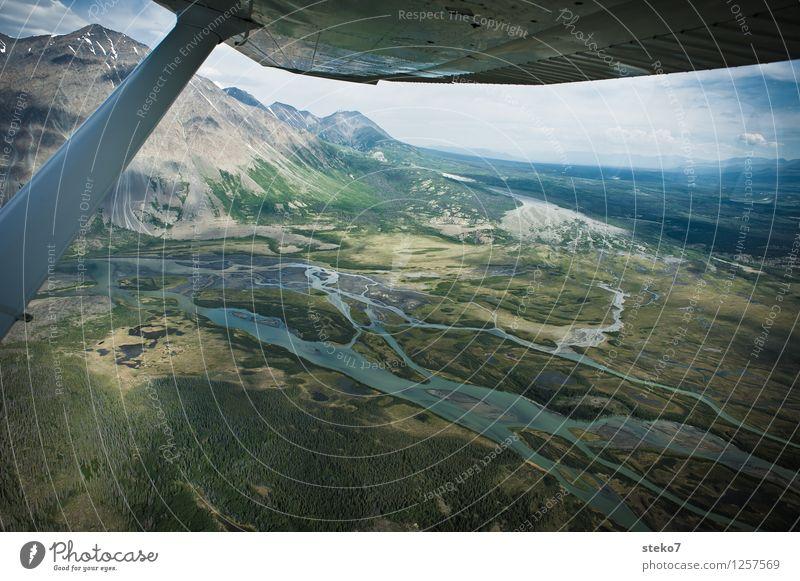 Bärenland Wald Berge u. Gebirge Flussufer Moor Sumpf fliegen Abenteuer entdecken Ferne Tundra Yukon Tragflächenspitze Kleinflugzeug Luftaufnahme