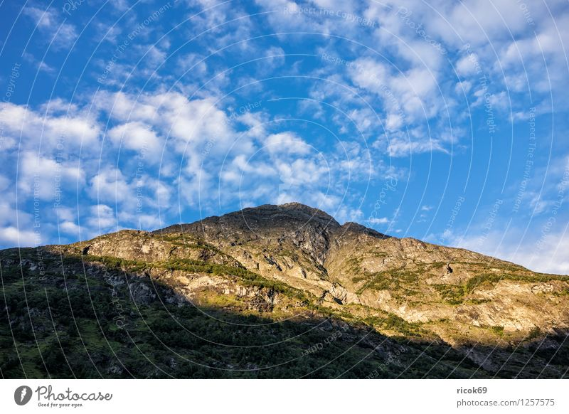 Berg Erholung Ferien & Urlaub & Reisen Sonne Berge u. Gebirge Natur Landschaft Wolken Idylle Norwegen Møre og Romsdal Reiseziel Himmel Skandinavien Farbfoto